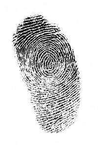 Identitätsdiebstahl gefährdet Online-Reputation